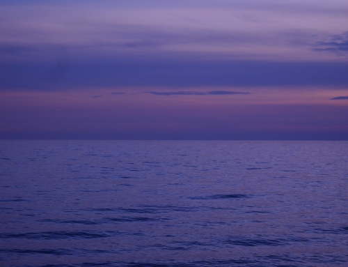 """Destino da """"Oceano mare"""" Baricco"""